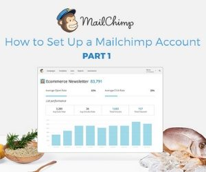 How To Set Up A Mailchimp Account!